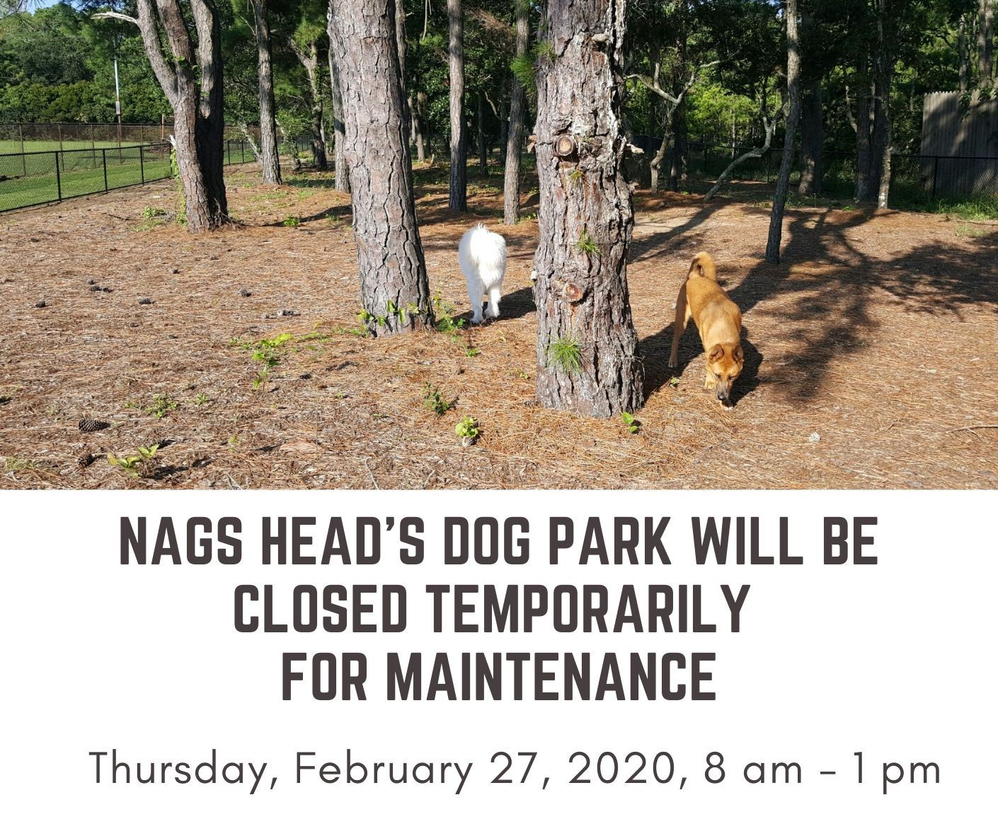 Nags Head's Dog Park Closed for Maintenance Feb 27 2020, 8-1 pm