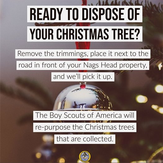 Christmas Tree Disposal 2019